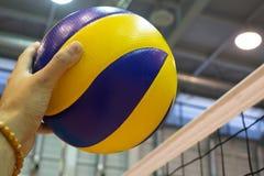 在地板上的黄色蓝色排球在健身房 库存图片