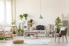 在地毯和植物的蒲团与gre的宽敞客厅内部的 免版税库存照片