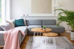 在地毯安置的两张簪子桌在白色客厅内部真正的照片与新鲜的植物和现代海报的 库存照片