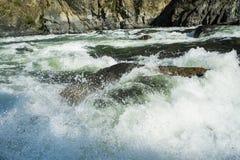 在地狱峡谷,爱达荷的怀特沃特急流 库存照片