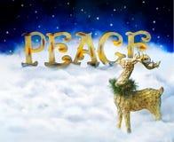 在地球上的和平 免版税库存图片