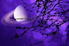 在地球附近的土星在夜空后面剪影干燥分支树 免版税库存照片