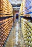 在地窖机架的乳酪 免版税库存图片