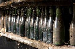 在地窖架子的老多灰尘的酒瓶 免版税库存照片