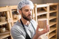 在地窖的乳酪制造商 免版税库存照片