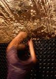 在地窖的瓶一wineyard的在马略卡垂直海岛  库存照片