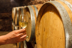 在地窖里递拿着一杯白葡萄酒 库存照片