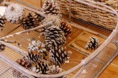 在地面上大胆地安置的一个柳条筐的许多杉木锥体 免版税图库摄影