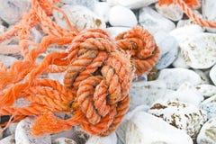 在地面上放弃的老损坏的被缠结的塑料绳索 库存照片
