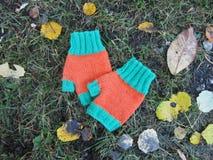 在地面上的五颜六色的手套 免版税库存照片