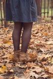 在地面上的叶子与起动 免版税图库摄影