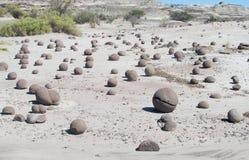 在地面上的圆的石头 免版税库存照片