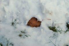 在地面上的小雪 库存图片