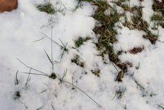 在地面上的小雪 库存照片