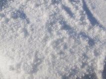 在地面上的新近地下落的雪 免版税库存照片