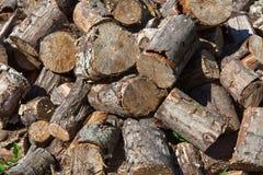 在地面上的火木头 库存照片