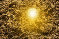 在地面上的电灯泡在自然的太阳能的 免版税图库摄影