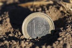 在地面上的硬币 库存照片