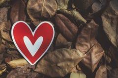 在地面上的红色纸心脏 库存照片