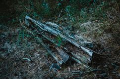 在地面上的老木睡眠者 烂掉日志和酒吧在低草中间 深绿背景 晚夏晚上 库存照片