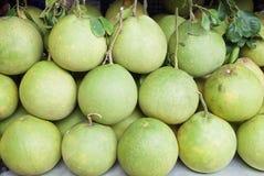 在地面上的葡萄柚 库存图片