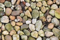 在地面的品种颜色小卵石 免版税图库摄影