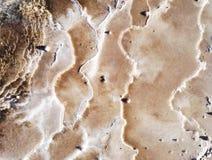 在地面的抽象地质结构与矿床 免版税库存图片