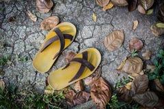 在地面的拖鞋 库存照片