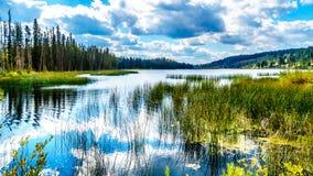 在坎卢普斯,不列颠哥伦比亚省,加拿大附近的lac Le Jeune湖 库存照片