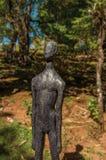 在坎波斯附近雕刻一部分的露天博物馆费利西亚Leirner的汇集,做Jordão 免版税库存图片