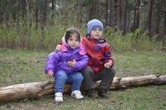 在坐一个小男孩和女孩的日志的森林反弹 库存图片