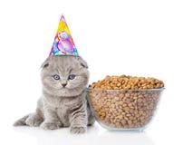 在坐在一碗的生日帽子的小猫食物附近 查出在白色 免版税库存照片
