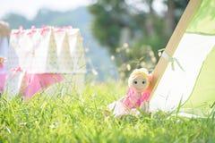 在坐在草的一件桃红色礼服的玩偶 库存图片