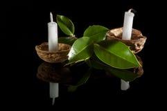 在坚果壳的蜡烛有冬青属的 免版税库存图片
