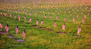 在坟墓的美国美国国旗在退伍军人公墓 免版税库存照片
