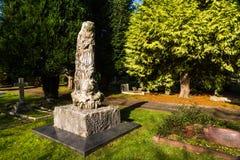 在坟墓顶部的石化树 库存图片