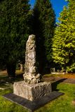 在坟墓顶部的石化树 免版税库存图片