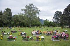 在坟边的花在有树的一座公墓在背景中 免版税图库摄影