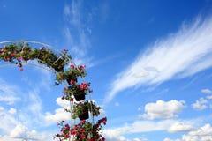 在垂悬在曲拱的树罐的花有蓝天背景 库存图片