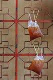 在垂悬在红色墙壁上的袋子的泰国传统冰茶 图库摄影