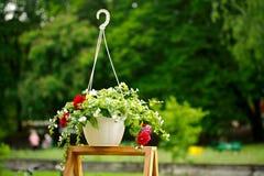 在垂悬的罐的五颜六色的花,在一个木立场 库存照片
