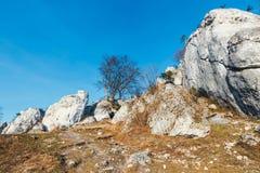 在垂直的平的墙壁上的攀岩运动员 Gora Zborow是在登山人中的一个非常普遍的目的地 免版税图库摄影