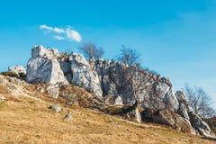 在垂直的平的墙壁上的攀岩运动员 Gora Zborow是在登山人中的一个非常普遍的目的地 库存照片
