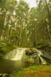 在垂直平静的周围的深森林Gundar瀑布 库存照片