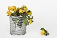 干黄色玫瑰 库存照片