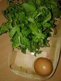 在垃圾的鸡鸡蛋 绿叶 免版税库存图片