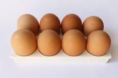 在垫座白色背景的十个鸡蛋 库存照片