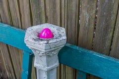 在垫座的洋红色塑料鸡蛋 免版税库存照片