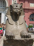 在埃及博物馆附近的小狮身人面象雕象在开罗,埃及 免版税库存照片