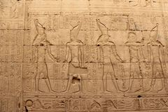 在埃德富寺庙的墙壁上的安心  埃及 图库摄影